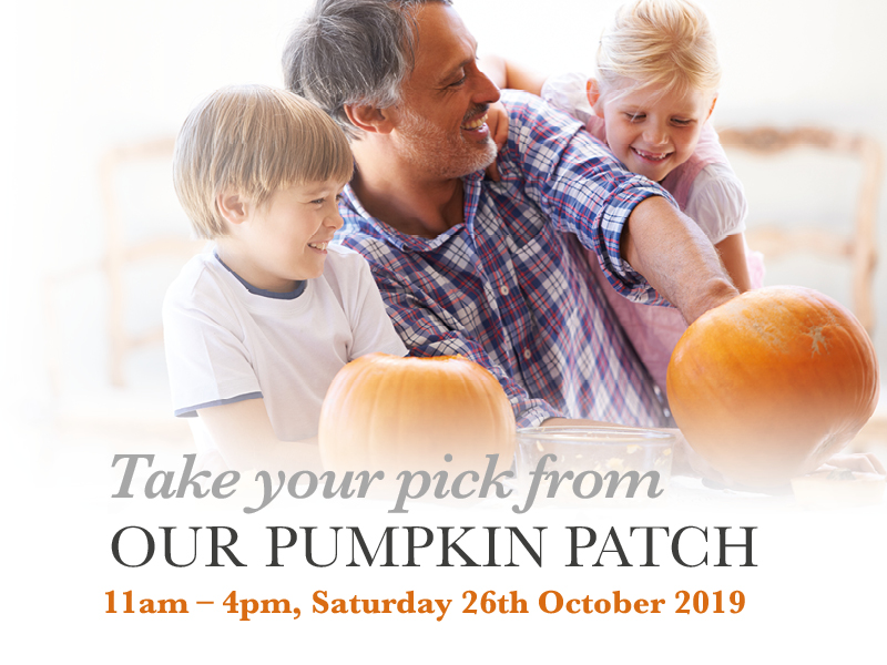 Take your pick from our pumpkin patch